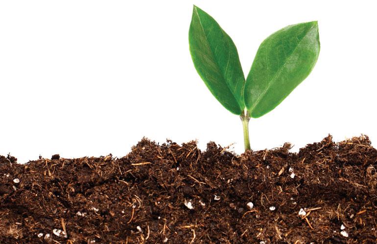 When Soil Isn't Soil