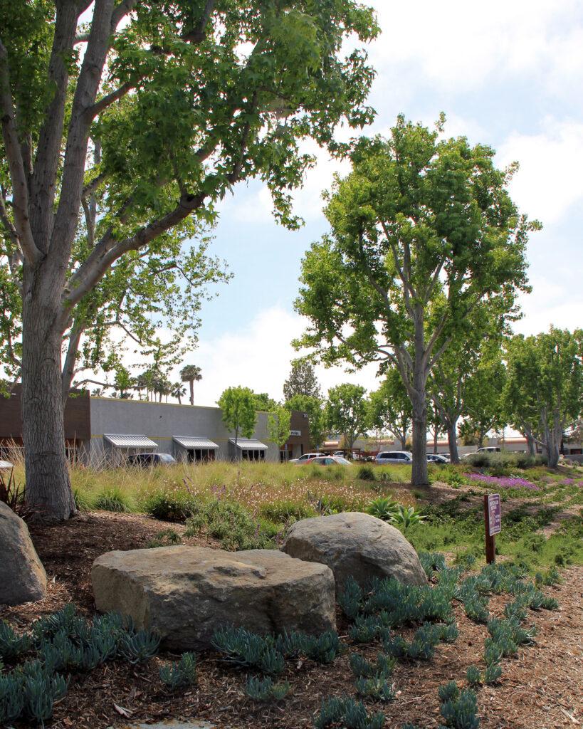 Palomar Tech Center
