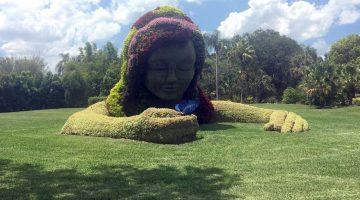 Flowering Creations