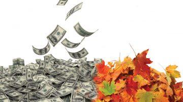 Leaf removal profit
