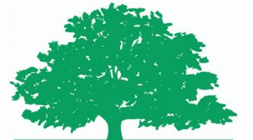 TREE Fund