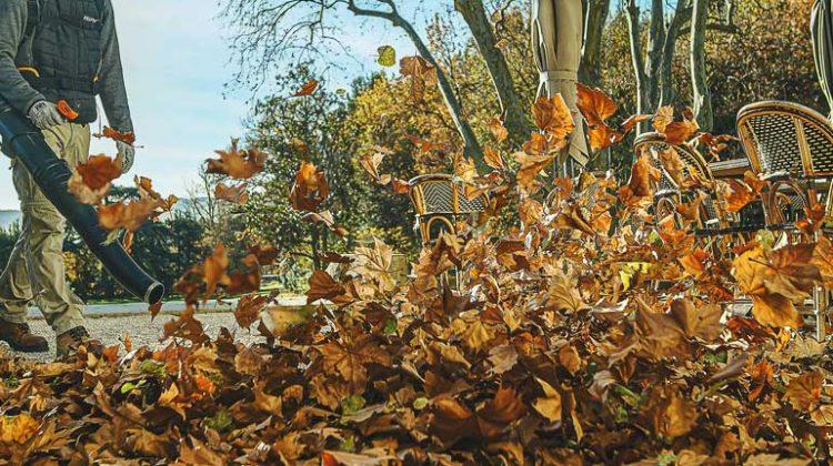 Leaf mulching